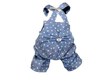 Polka Dotted Dog Pants with Suspenders